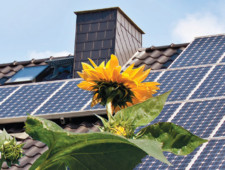 Trends In The Rapid Evolution Of U.S. Distributed Solar Policy